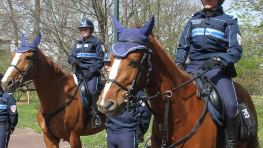 """""""Communication non-violente"""", policiers à cheval ou à vélo :  le plan des écologistes pour plus de sécurité à Lyon"""