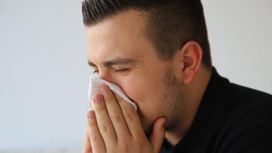 Pollens de graminées : le Rhône en alerte rouge !