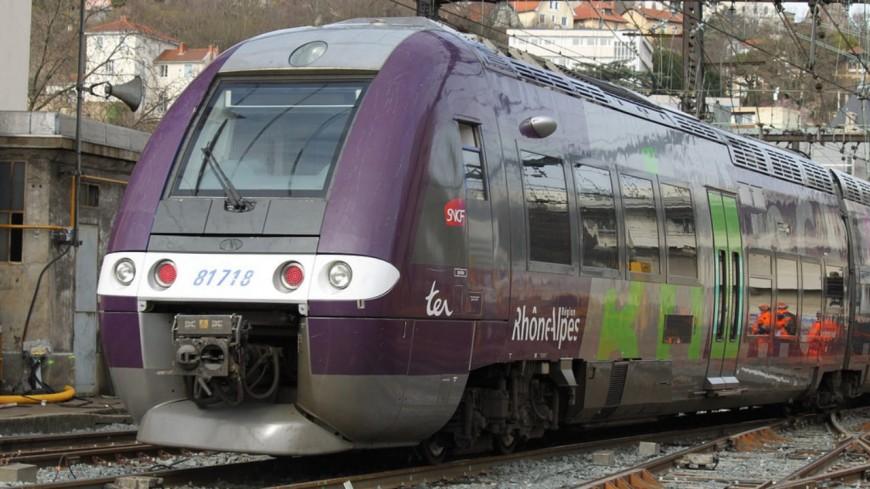 Près de Lyon : une voiture percutée par un train à un passage à niveau