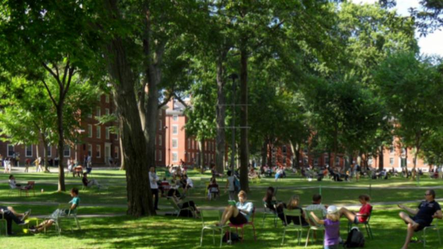Moins de bureaux et de voitures, davantage d'arbres et de logements : à quoi va ressembler la Part-Dieu des écologistes dans 10 ans ?