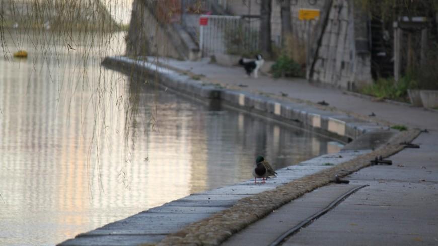 Lyon : il prend une bouteille en pleine tête lors d'une violente rixe sur les quais de Saône