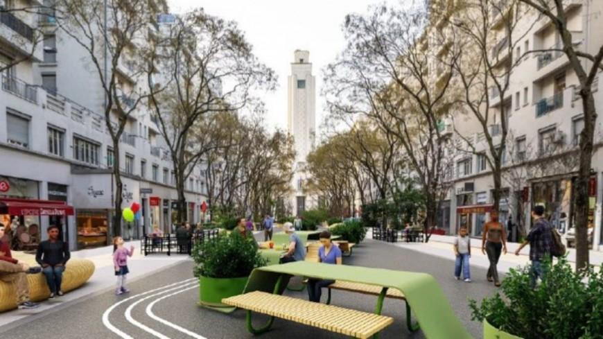 Villeurbanne : des jardinières installées avenue Henri-Barbusse avant l'arrivée des bancs