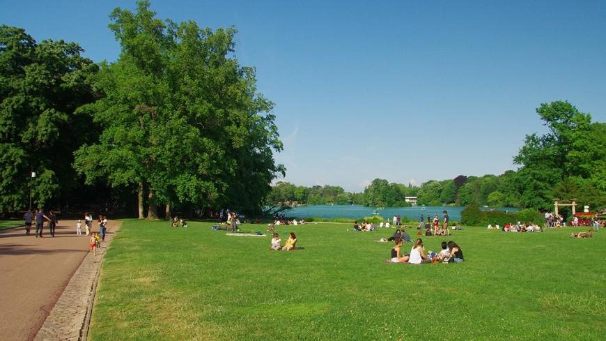 Lyon : un grand pique-nique pour les célibataires au Parc de la Tête d'Or ce dimanche