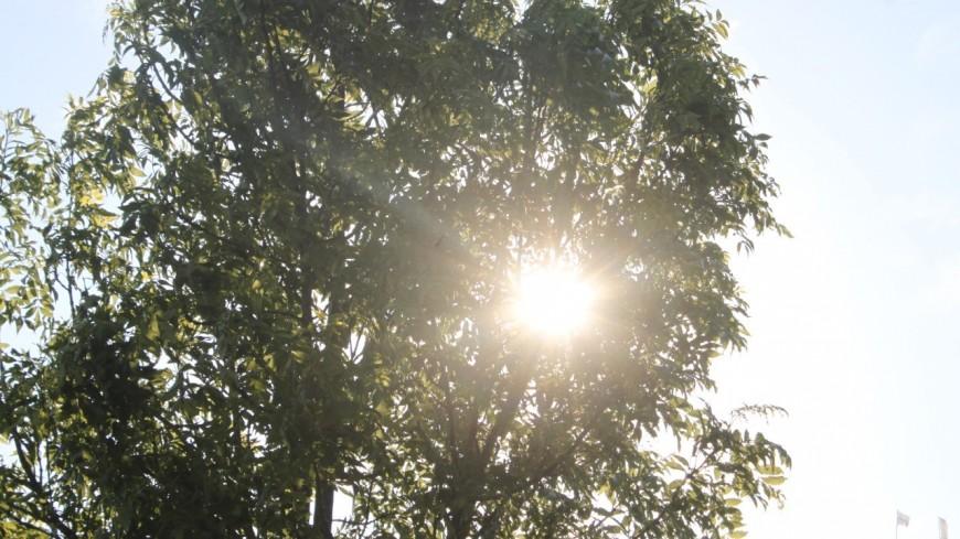 Météo à Lyon : soleil et chaleur de retour cette semaine dans le Rhône !