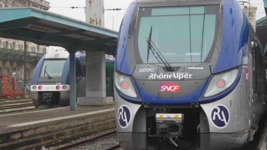 Après l'ouverture du Lyon-Bordeaux en 2022, bientôt une ligne de train Lyon-Thionville ?