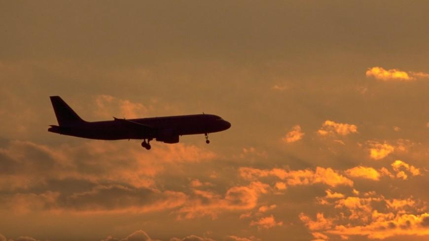 Aéroport de Lyon : un avion fait demi-tour après avoir percuté un oiseau