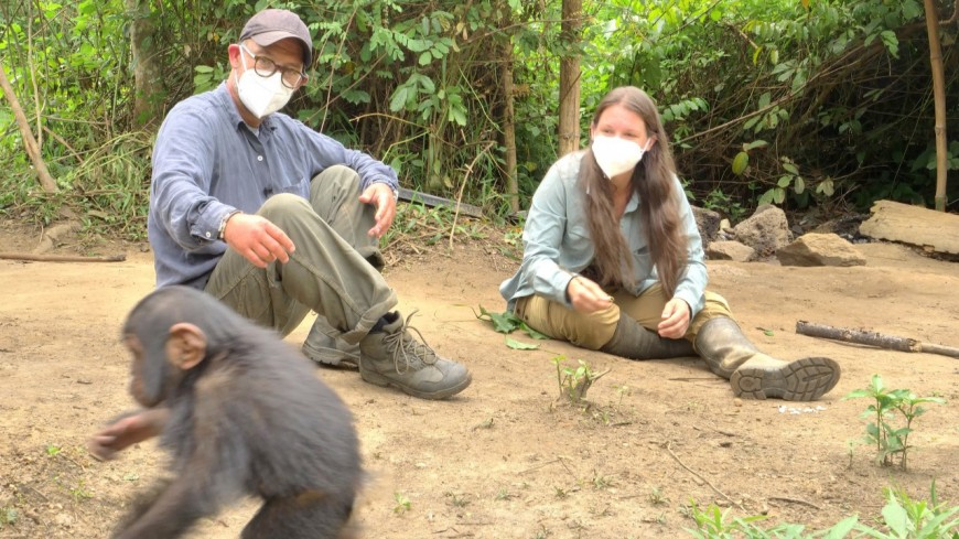 """""""Primates en sursis, le combat d'Amandine"""": une primatologue de Lyon au cœur d'un documentaire"""