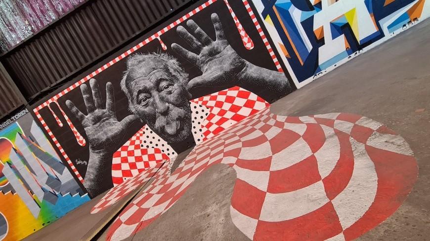 Lyon: du street art plein les yeux avec le Peinture Fraîche Festival