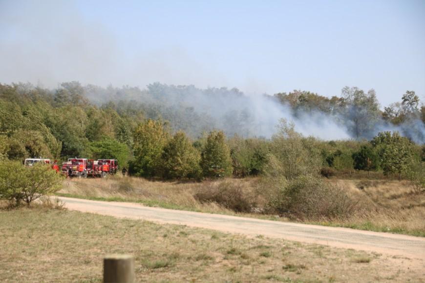 Violents incendies dans le Sud-Est : 60 pompiers de la région envoyés en renfort
