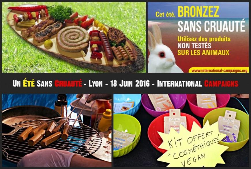 Lyon : le vegan promu place de la République