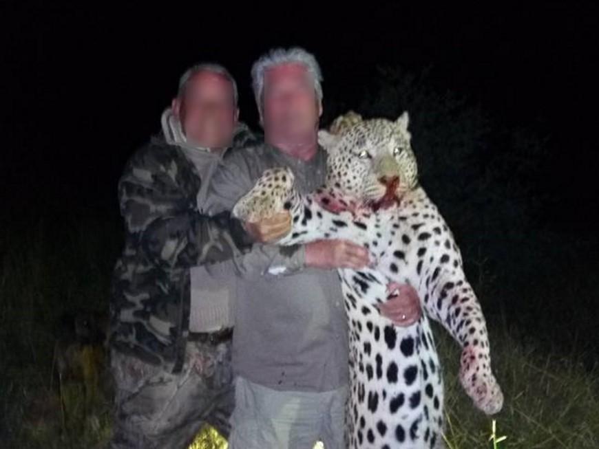 """Safari-chasse : le groupe Faure """"choqué par la teneur des images diffusées"""""""
