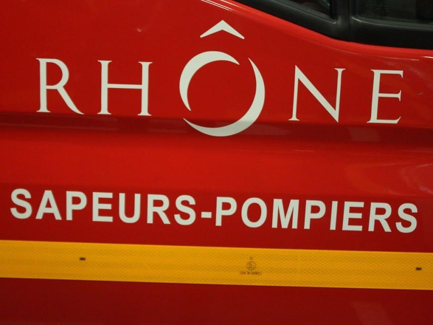 Près de Lyon: trois hectares de végétation partent en fumée