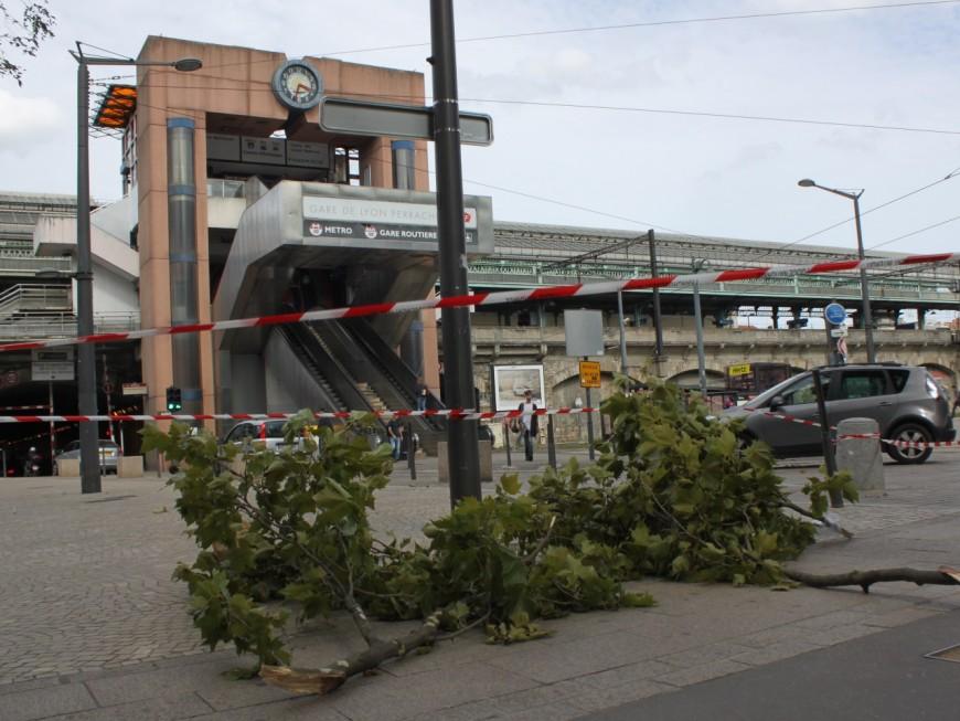 """Passage de la tempête """"Zeus"""" : des dégâts importants dans le Rhône"""