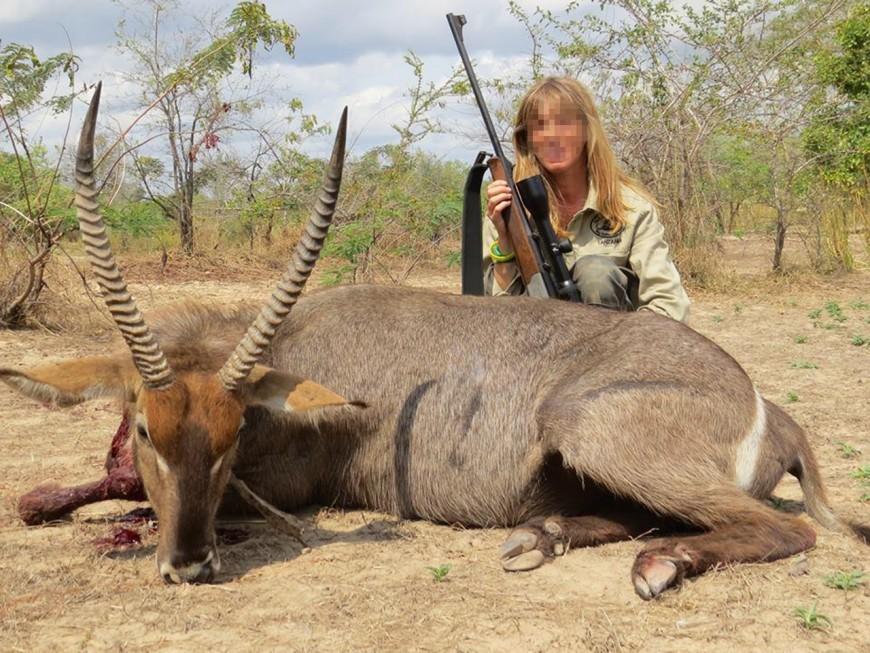 Safari-chasse : toujours à la tête du Super U, les Alboud attaquent des internautes menaçants