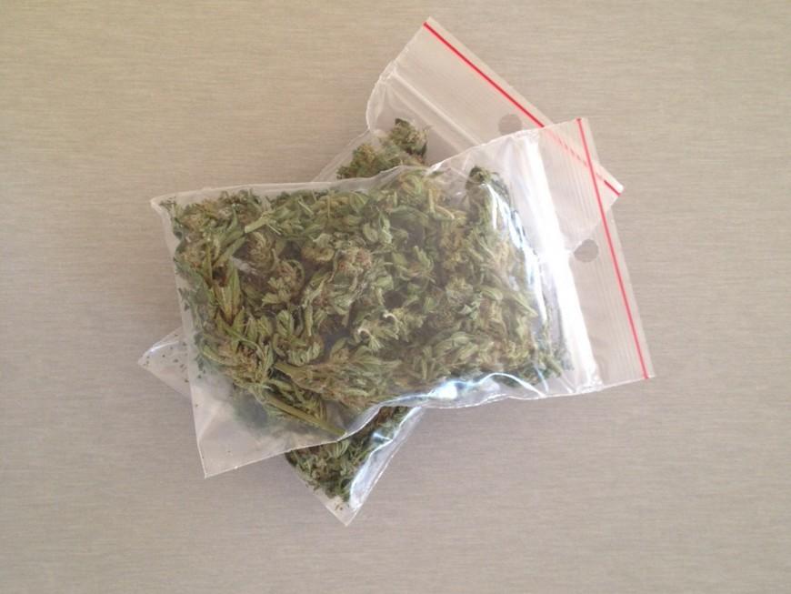 Contrôlés pour une faute de conduite, ils transportaient 215 grammes de cannabis