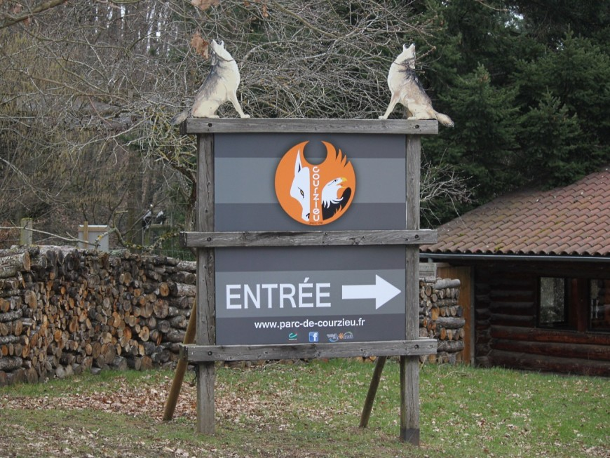 De nouveaux loups au parc de Courzieu