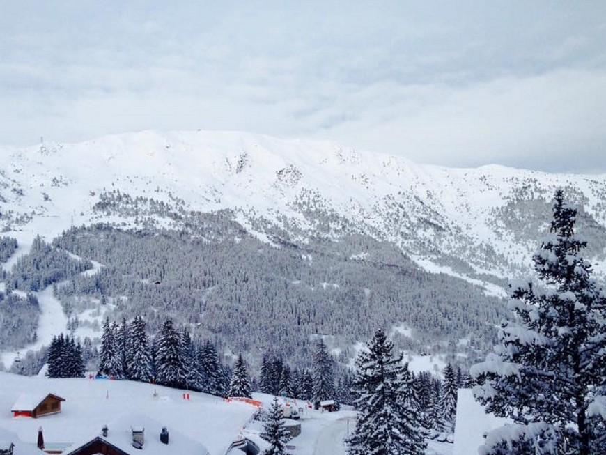 Un skieur lyonnais fait une chute mortelle à La Plagne