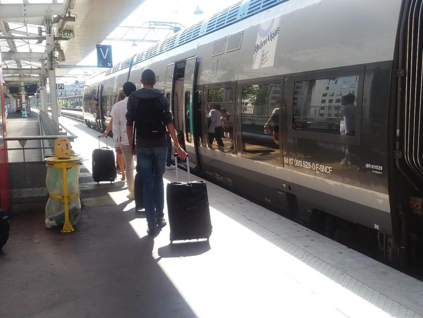 Ils volent des bagages dans un train de la gare Part-Dieu de Lyon