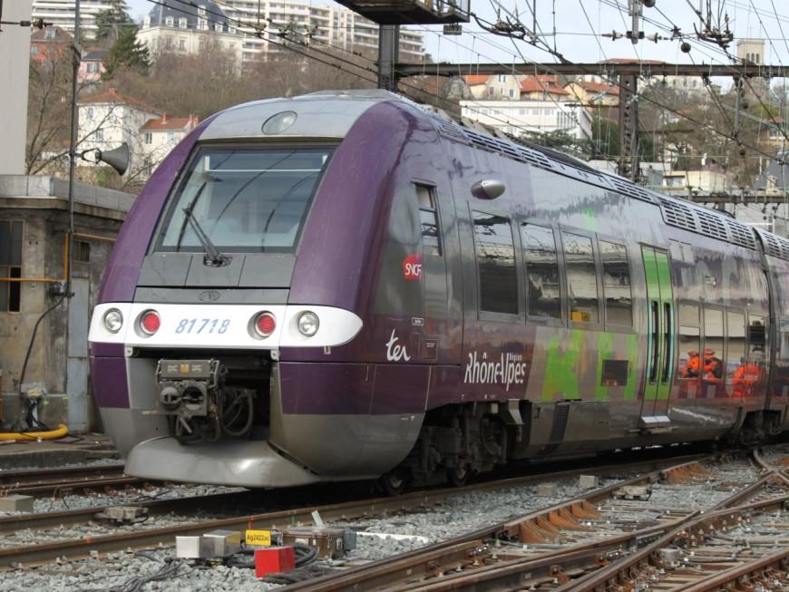 La ligne TER Lyon-Roanne à l'arrêt après un accident à un passage à niveau
