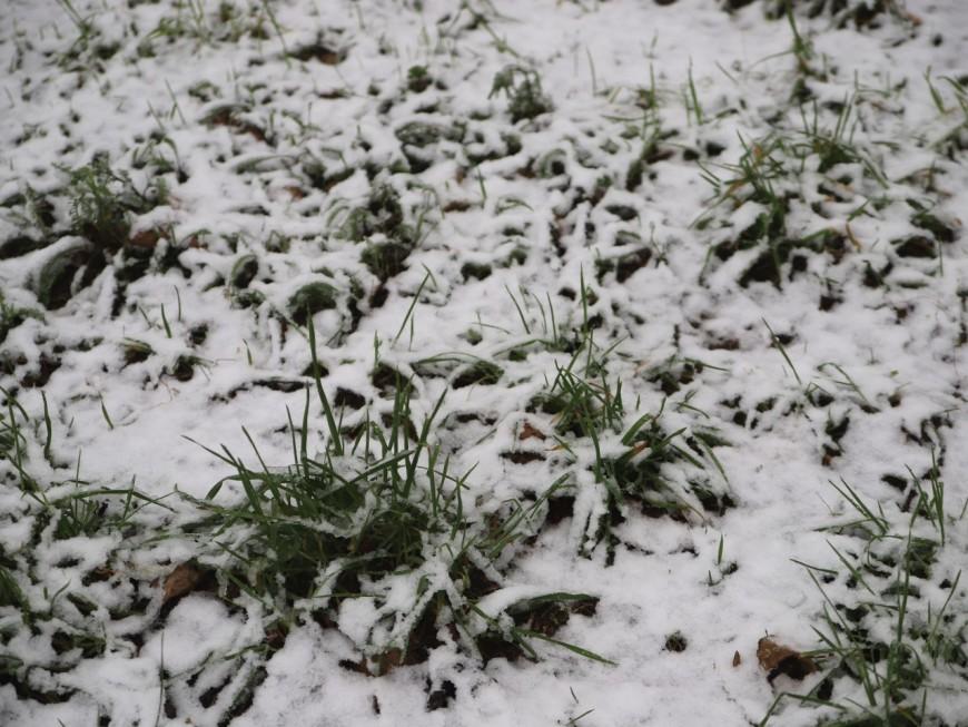 De la neige attendue dans l'ouest lyonnais, la Métropole de Lyon déclenche son dispositif