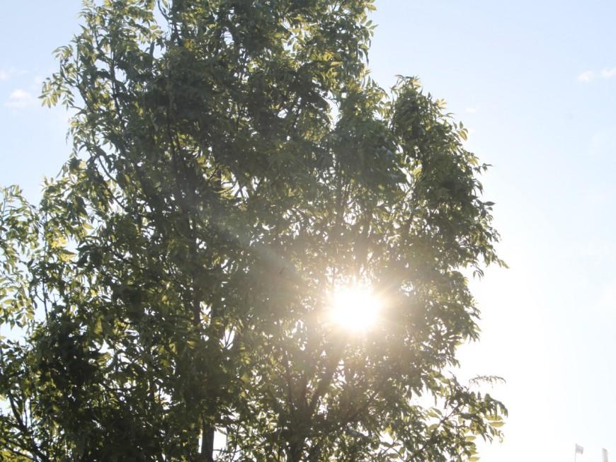 Météo à Lyon : un nouveau jour printanier ce jeudi