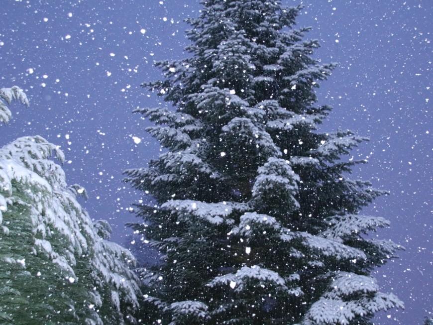 L'A48 coupée entre Coiranne et Voreppe à cause de la neige