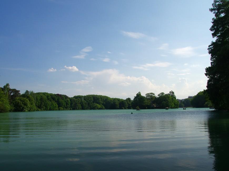 Lyon :une exploration pour mieux connaître le lac du parc de la Tête d'Or