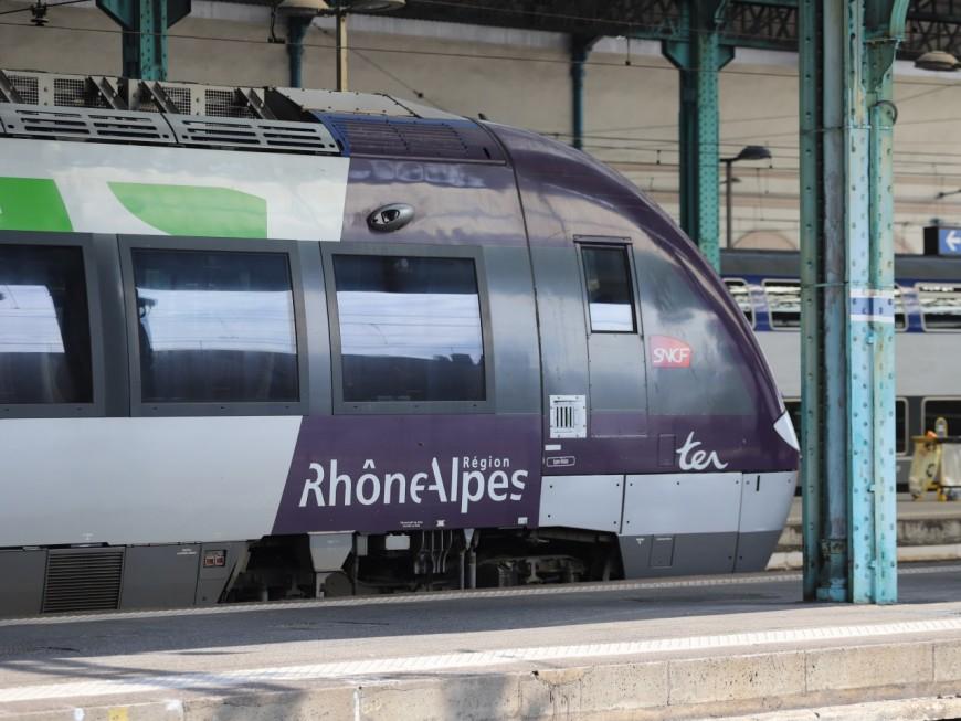 """Région : les élus PS estiment que Laurent Wauquiez """"refuse de s'engager sur les infrastructures ferroviaires"""""""