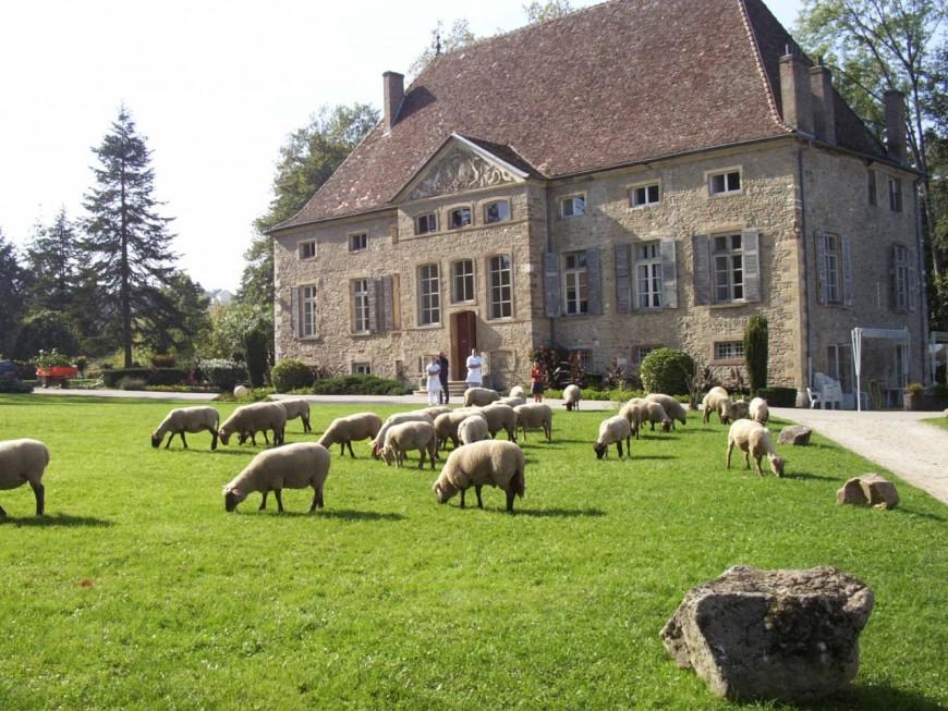 La vente d'un château au fils d'un député du Rhône ravive de vieilles affaires
