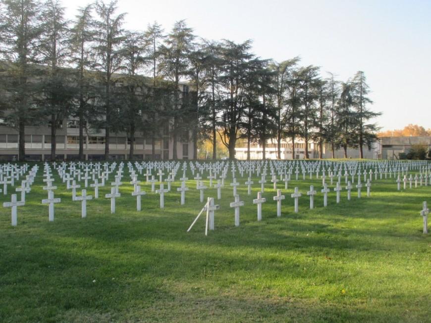 Villeurbanne : un automobiliste ivre interpellé en plein rodéo nocturne dans le cimetière militaire