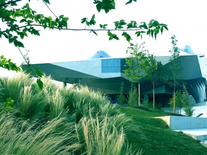 Le Musée des Confluences : des visiteurs et des œuvres