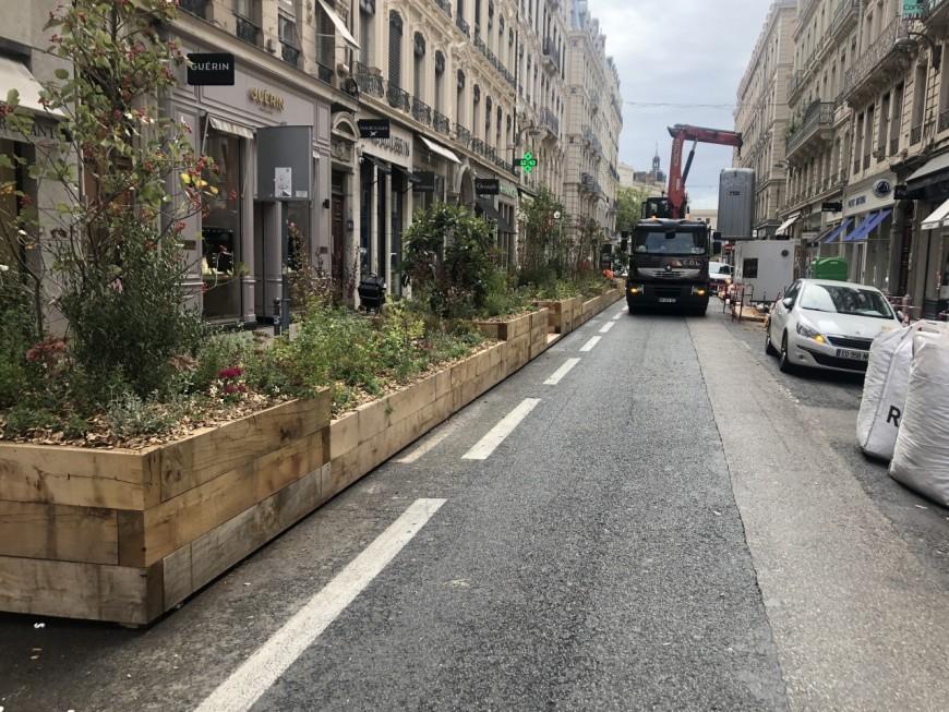 Déconfinement : les jardinières de la rue Edouard-Herriot vont être retirées !