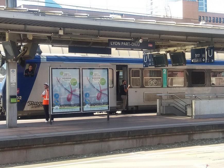 1 TER sur 5 annoncés mardi à la SNCF