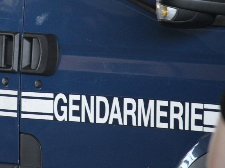 Près de Lyon : 6 mois ferme pour avoir délibérément foncé sur un véhicule de gendarmerie