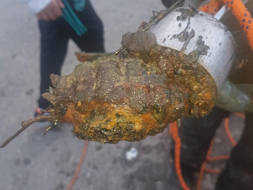 Lyon : une grenade dégoupillée pêchée à l'aimant dans la Saône