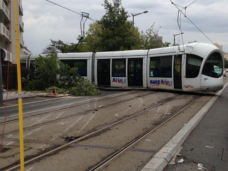 Lyon : le tramway déraille, deux personnes blessées