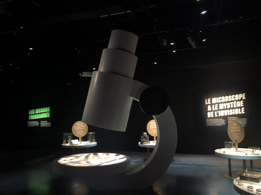 Musée des Confluences : Mini-monstres, une expo pour plonger au cœur de l'infiniment petit