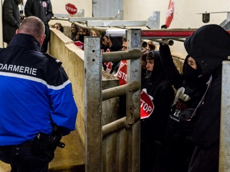 """Le """"couloir de la mort"""" des abattoirs de Corbas bloqué cette nuit par des activistes"""