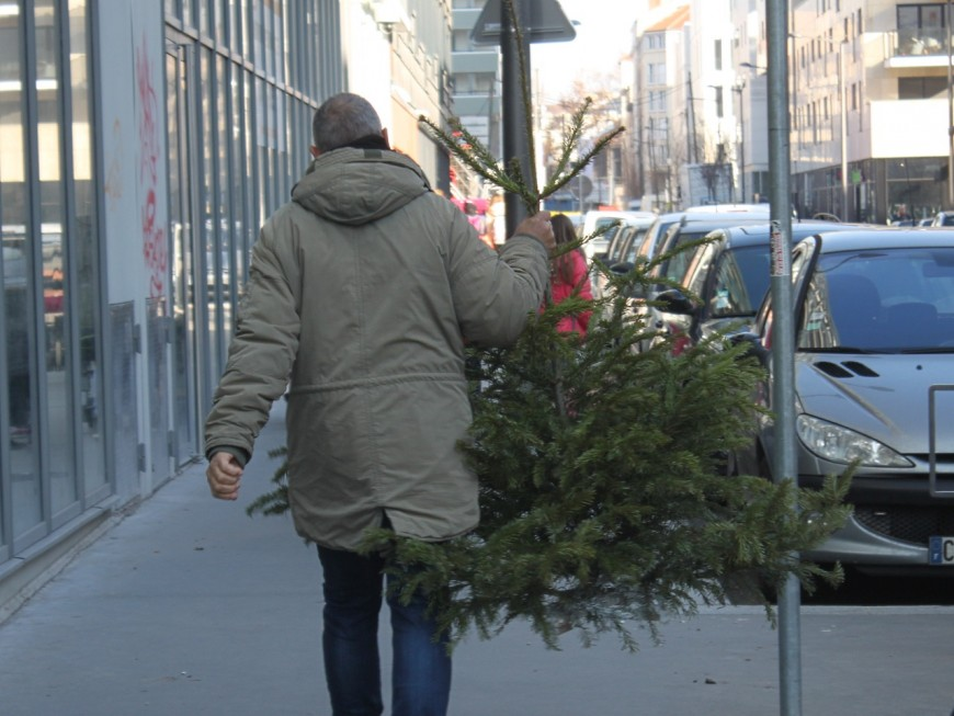 Seconde vie des sapins dans le Grand Lyon: 202 tonnes collectés, nouveau record