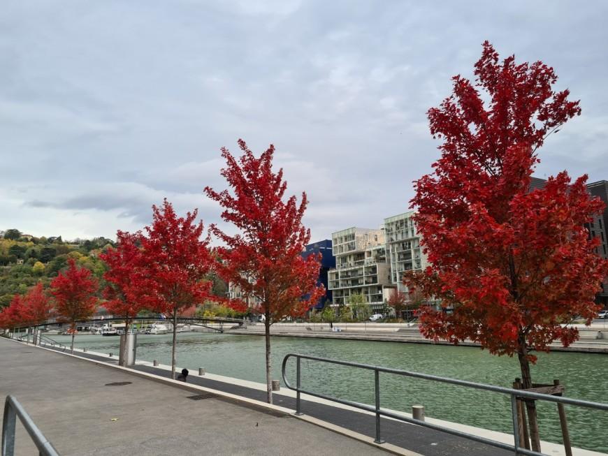 Le Mag des bons plans du week-end à Lyon (24 et 25 octobre)
