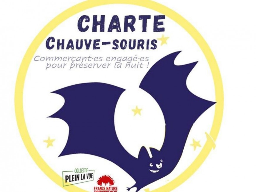 """Lyon : """"Chauve-souris"""", la nouvelle charte pour les commerçants qui """"réduisent l'impact de l'éclairage artificiel"""""""