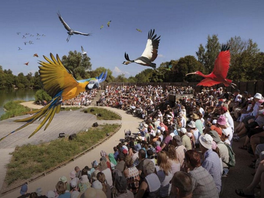 Cette année, le parc des oiseaux se met à l'heure africaine