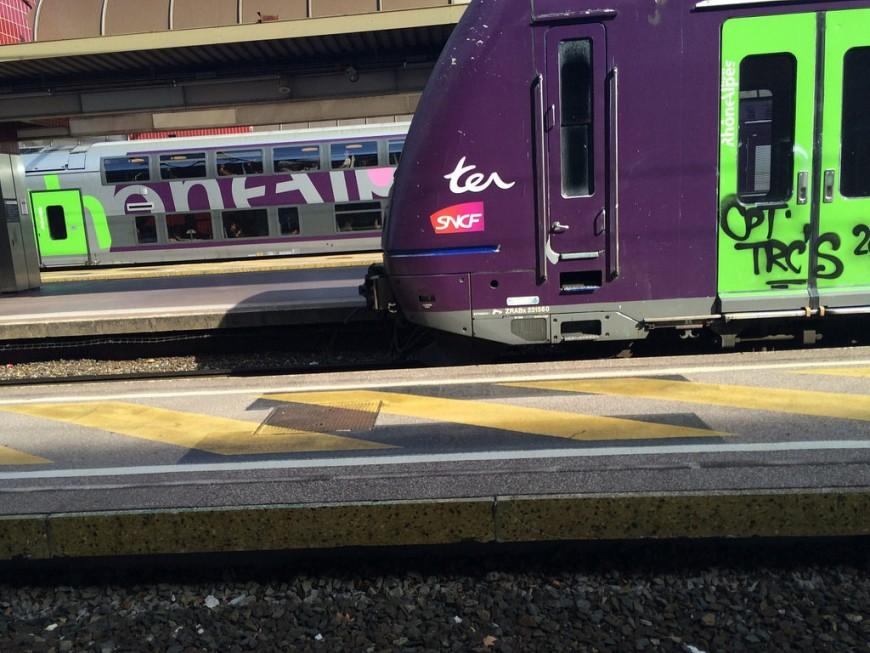 Collision entre un train pour Lyon et une voiture : deux morts à un passage à niveau dans l'Ain