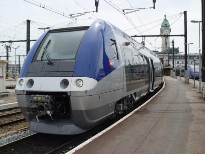 Mouvement de grève des cheminots lyonnais : plusieurs lignes TER perturbées ce vendredi