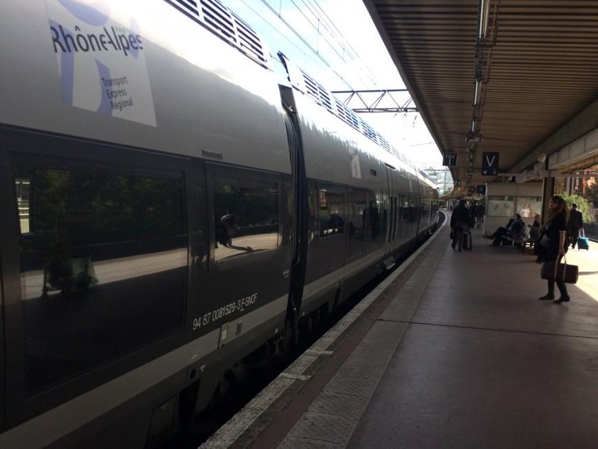 Des arbres sur les voies : le trafic TER entre Lyon et Saint-Etienne interrompu