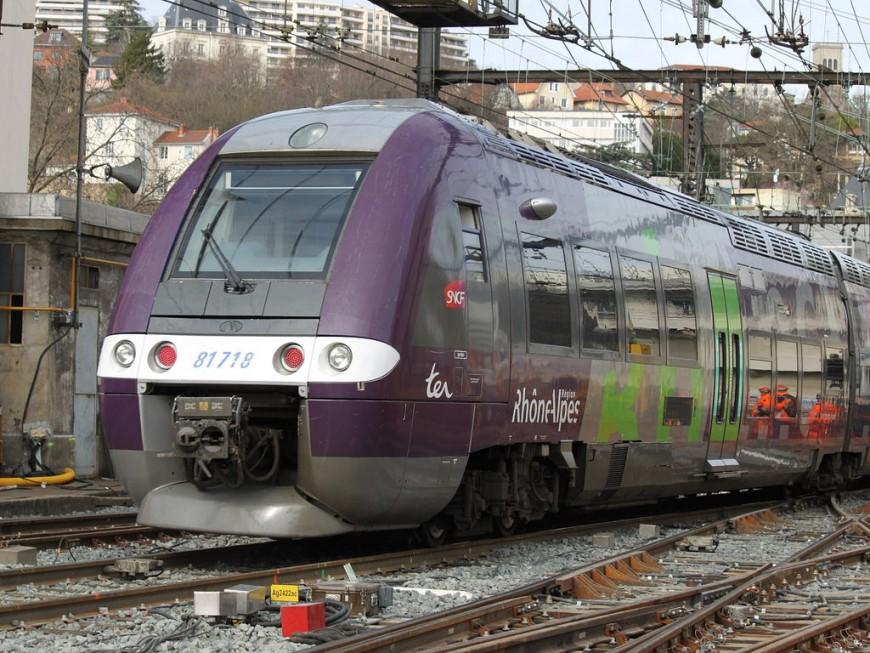 Le trafic des TER interrompu entre Lyon et Saint-Etienne ce lundi matin (MàJ)