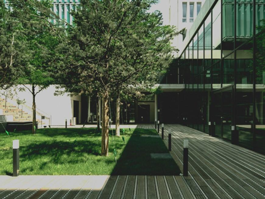 L'Université de Lyon a repris sa marche vers l'Idex