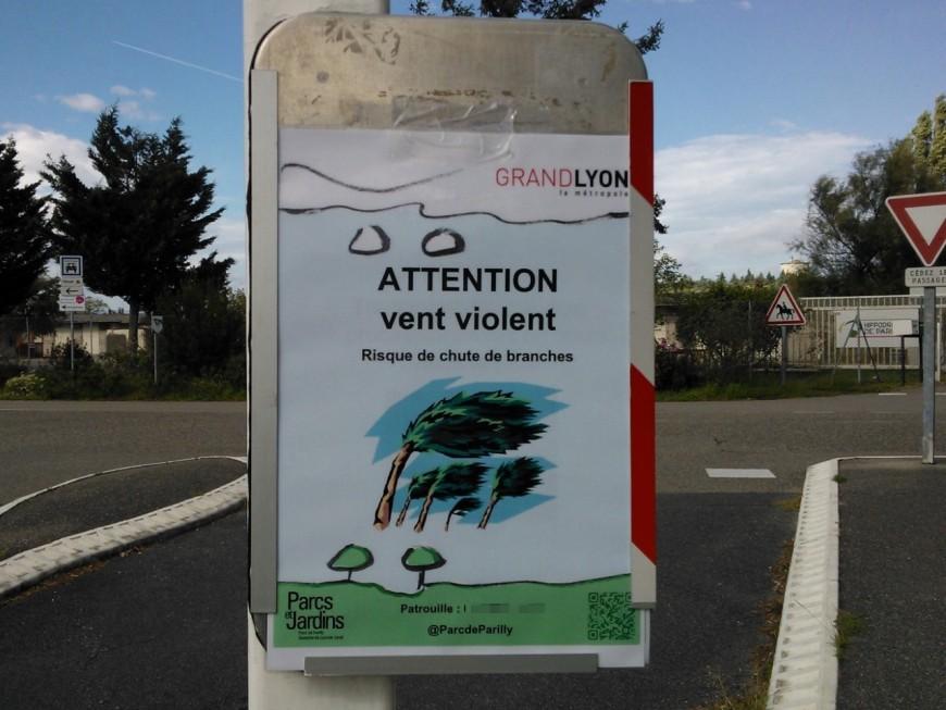 Vent violent : les 3 grands parcs de la Ville de Lyon évacués