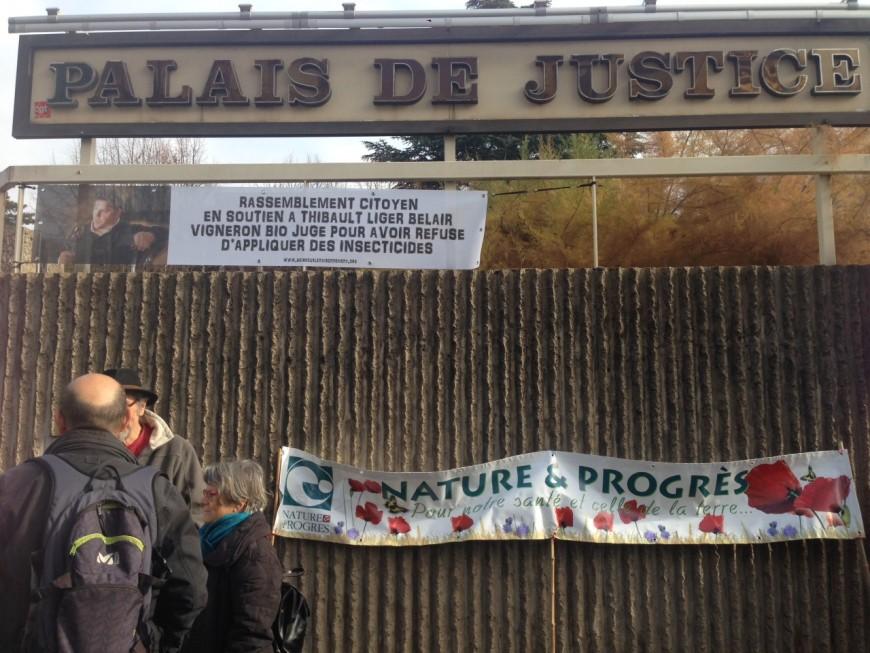 Rhône : le vigneron qui avait refusé de traiter ses vignes a été relaxé