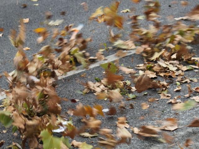 Fin de l'alerte orange aux vents violents dans le Rhône